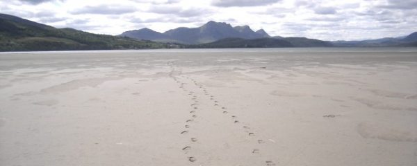 Footsteps in the Sand - On and Ever Onward