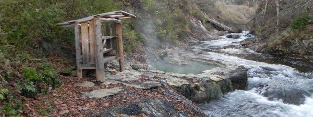 Wild Bath Japan